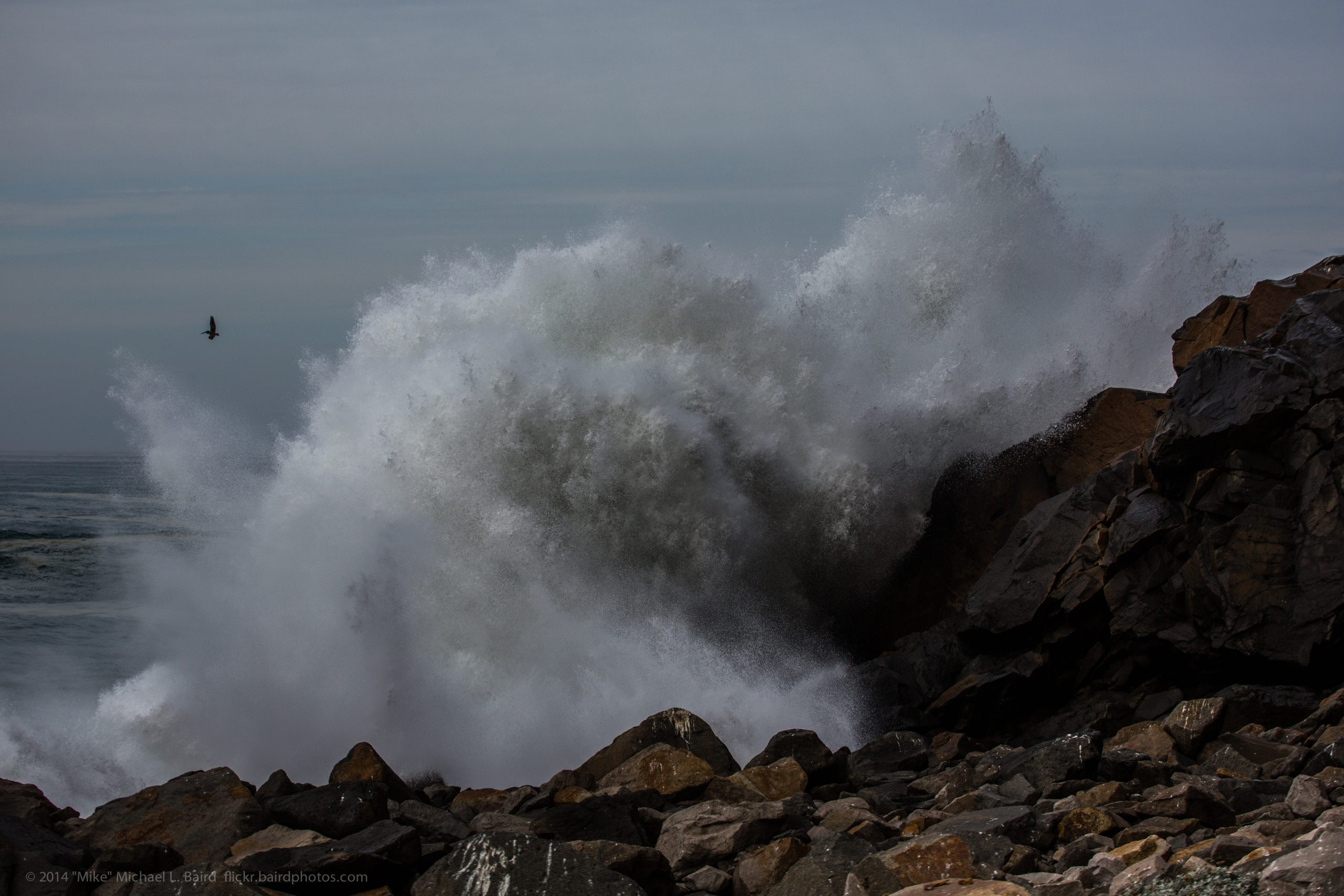 How will climate change likely affect the Morro Bay watershed and estuary?