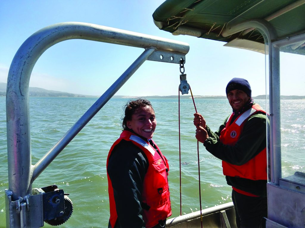 Eelgrass sediment sampling