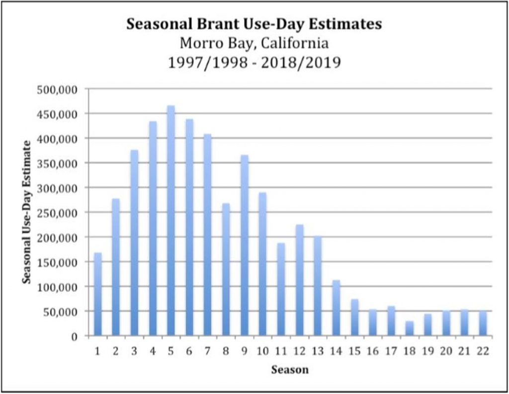 Seasonal Brant Estimates