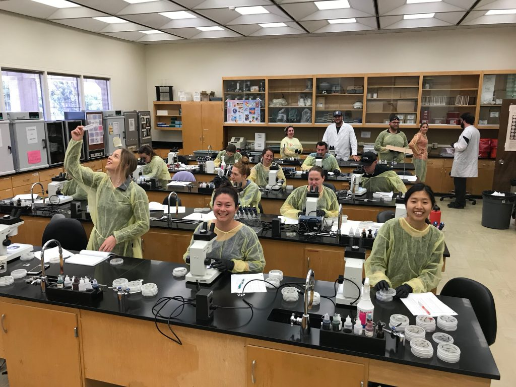 Cuesta College Students Lab Work