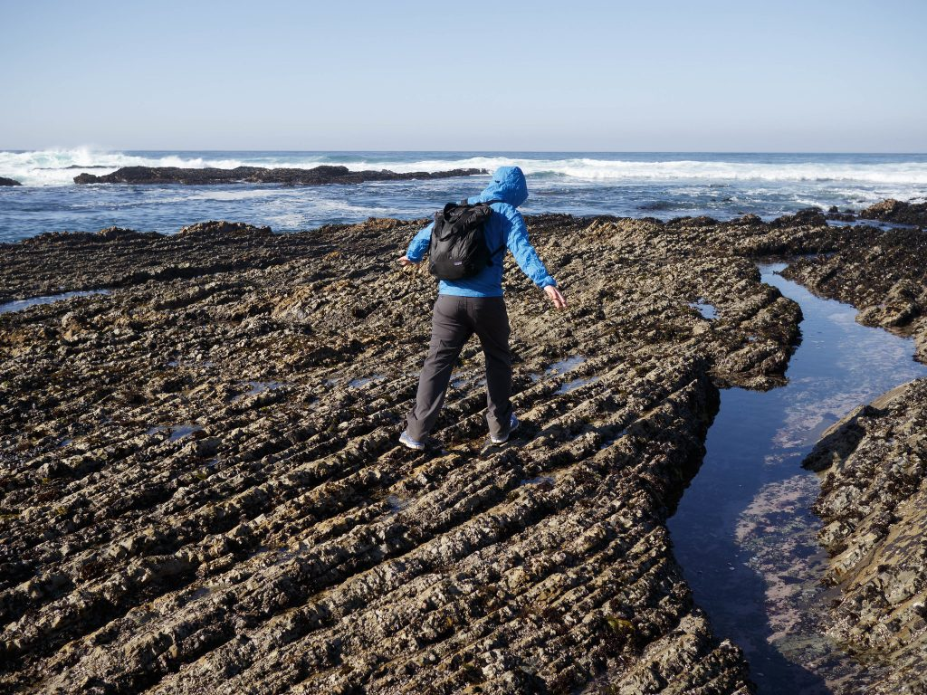 Person walking along tidepools in Montana de Oro State Park. Copyright calamity_sal.
