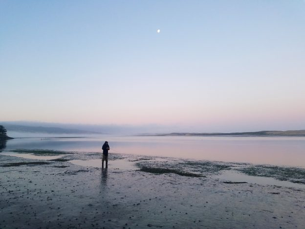A staff member stands in waders in a puddle on the mudflat.