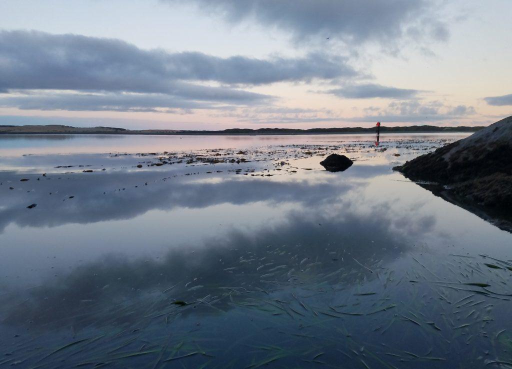 Water rises in Morro Bay