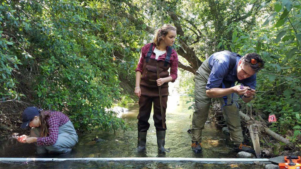 Staff and volunteers collecting habitat data in 2019.