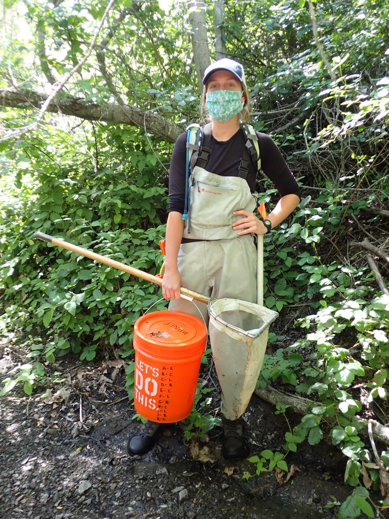 It took a bit to adjust to wearing facial coverings in the field, but we discovered some unexpected advantages! On this survey in Los Osos Creek, masks protected half of our faces from surprise encounters with poison oak.