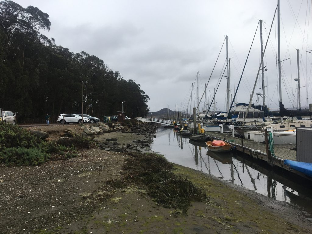 State Park Marina is a popular access point near the Morro Bay State Park Campground with boat moorings, a boardwalk trail, a kayak launch area, and a restaurant. The parking lot is heavily used, and it is beginning to show its age.