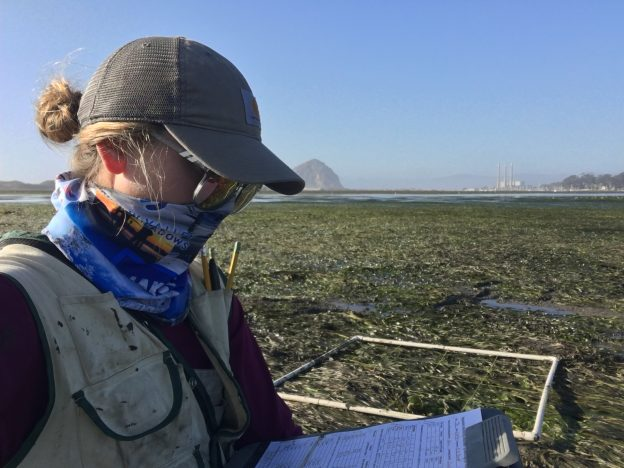 Makenzie, Monitoring Coordinator, takes data while monitoring eelgrass in Morro Bay.