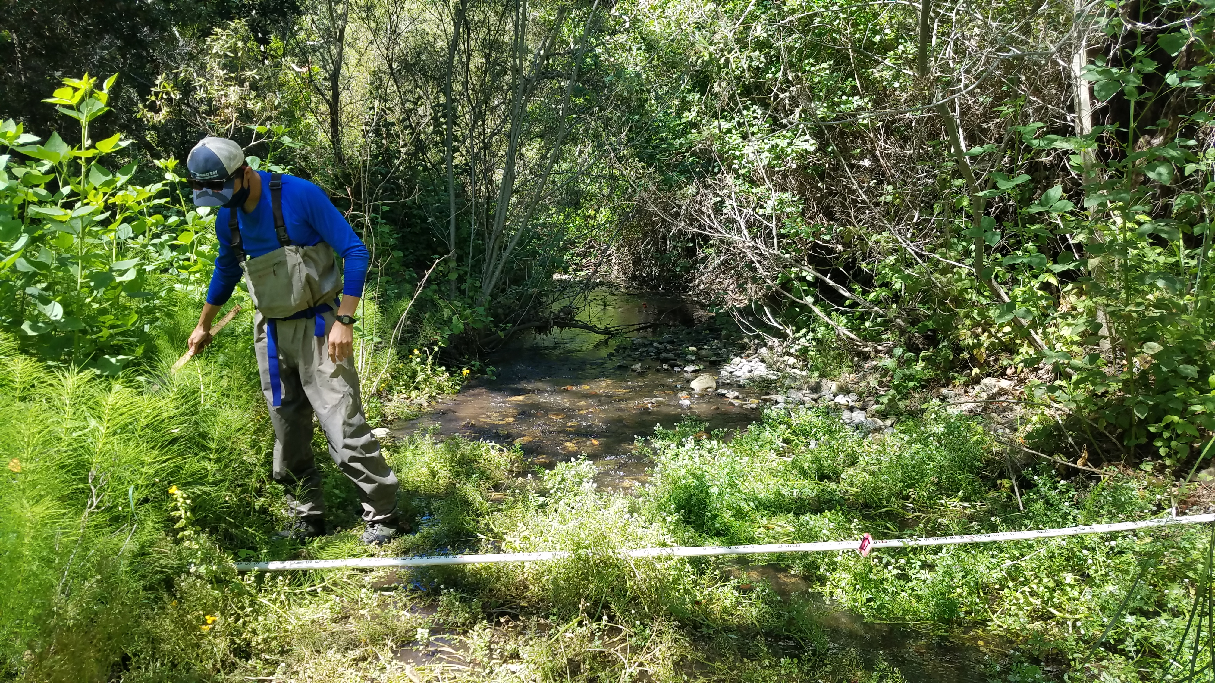 Our former field technician, Blake, measures the wetted width of a stream.