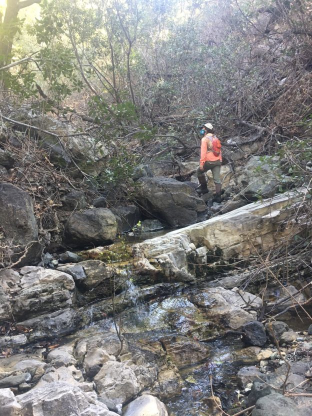 Monitoring staff conducts bioassessment site scouting in the Morro Bay watershed