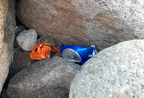 Bar cans crushed and shoved between rocks in the rip rap.