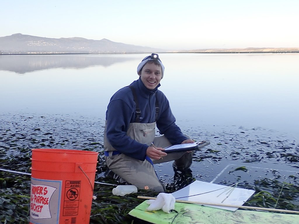 Bret, our new Monitoring Projects Manager, conducting his first eelgrass monitoring survey.