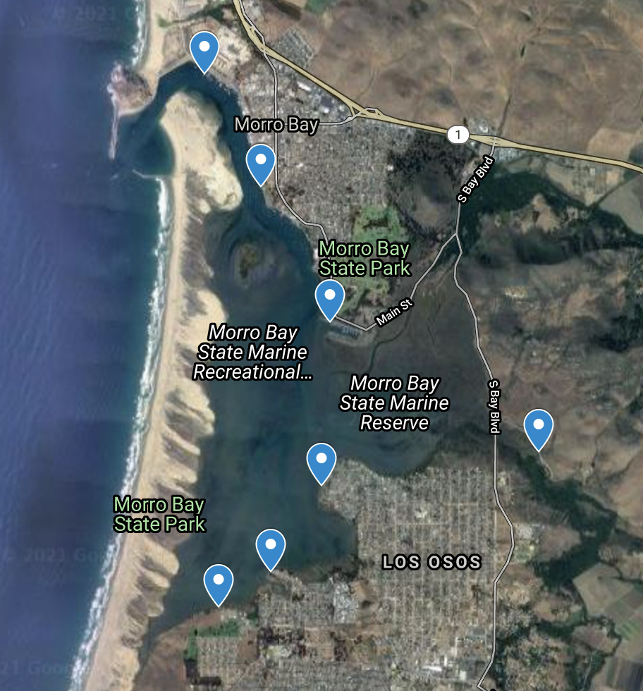 Map of Dr. Bockmon's sampling locations in Morro Bay. Map sourced from Google Maps.