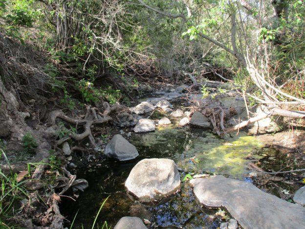 Creek with rocks_Morro Bay National Estuary Program
