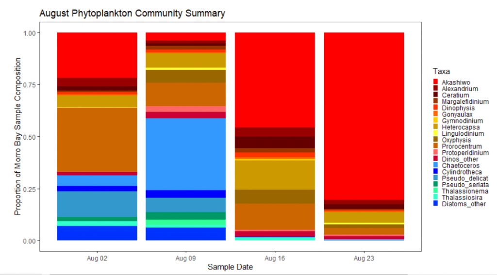 The graph shown above shows proportions of phytoplankton species present in samples from Morro Bay from August 2 to August 23. The red bar indicates presence of the phytoplankton dinoflagellate called Akashiwo sanguinea which is believed to be the culprit for the recent red tide.